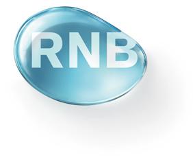 R.N.B., S.L.